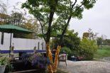 万泽太湖庄园图片