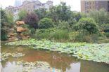 九洲花园缇香郡图片