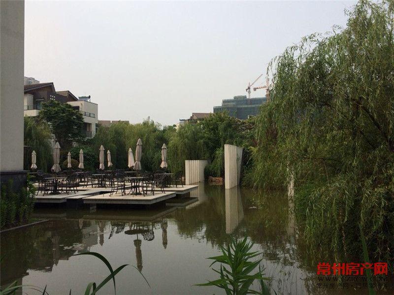 滨江明珠城