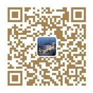 九洲新世界二维码