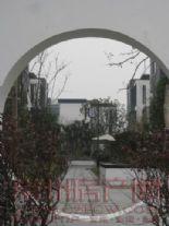 香树湾别墅图片