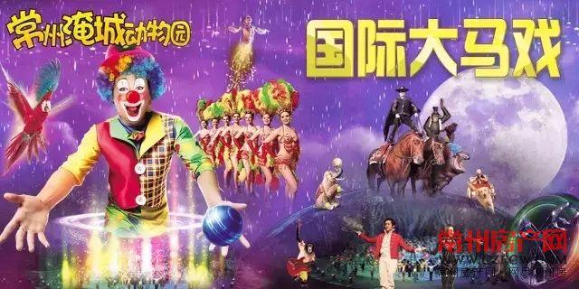 """淹城野生动物世界""""空中芭蕾""""惊艳献演!"""